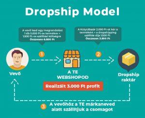 dropship-model